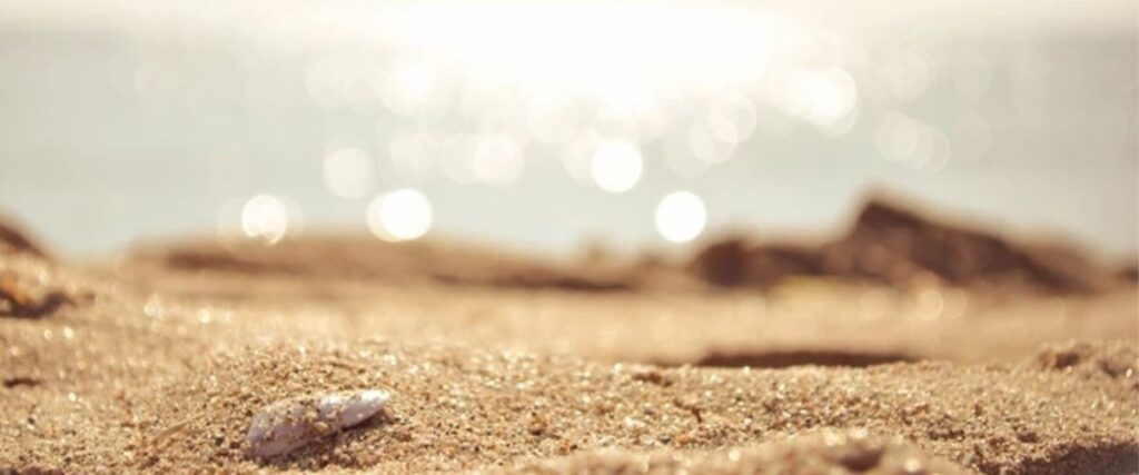 A shell on a beach - encouraging mindfulness. Hope Therapy